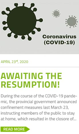 accueil-covid-19-avril-23-en