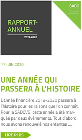rapport-annuel-2019-2020
